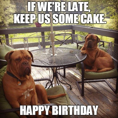 Funny Birthday Quotes Keep us some cake