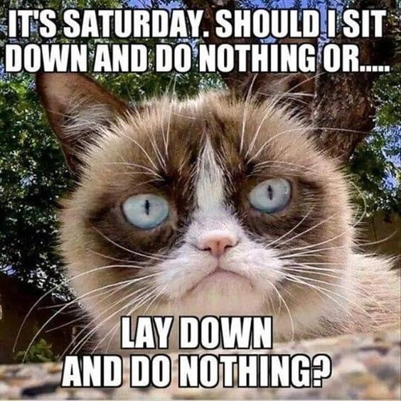 happy Saturday images funny