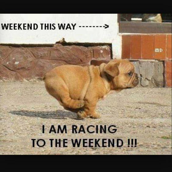 happy weekend meme