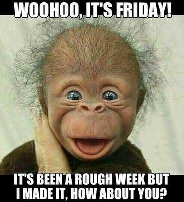 Woo-hoo, it's Friday