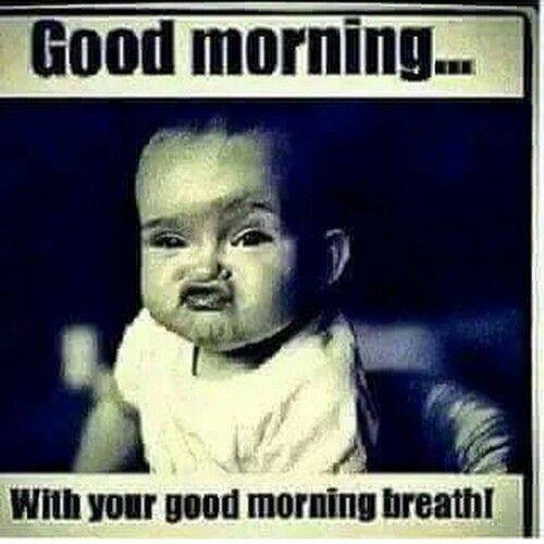 good morning memes cute