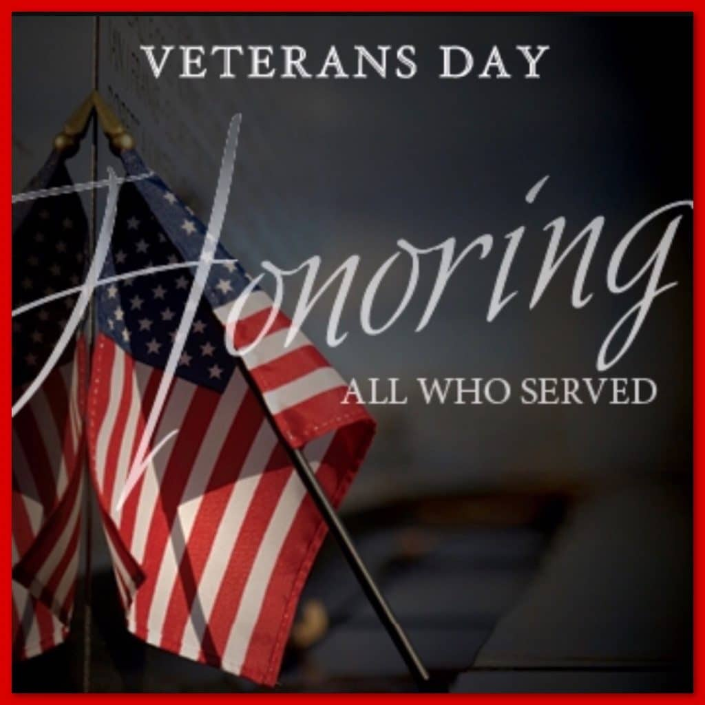 happy veterans day thank you