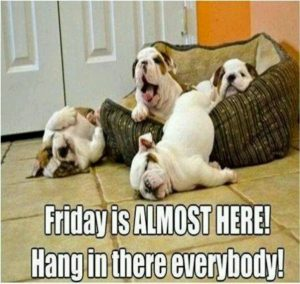 Funny Thursday Memes It's Friday