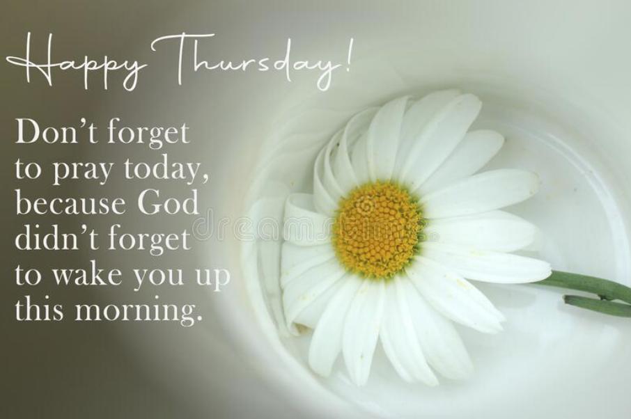 Happy Thursday Wishes