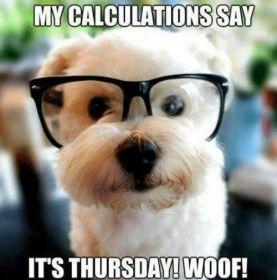 Thursday Memes for students