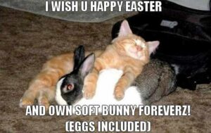 Funny Easter Memes for Adults