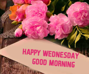 Happy Wednesday Wishes Good Morning