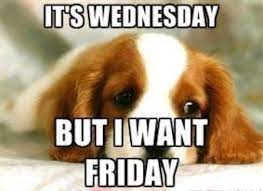 Happy Wednesday memes